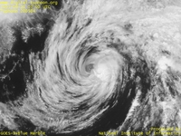Typhoon Wallpaper Image : Typhoon 200504 (NESAT) : Typhoon NESAT whose clouds around the center became thin (0300 UTC)