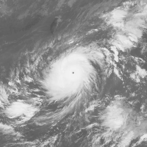 Typhoon 200619 (WNP) : MTS106102903
