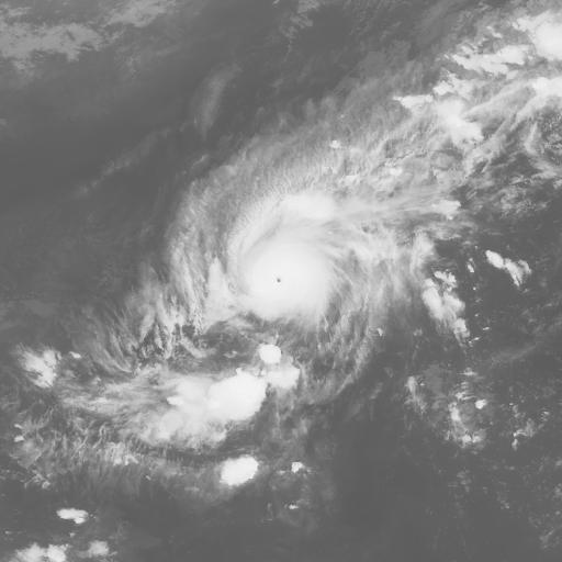Typhoon 200620 (WNP) : MTS106111012